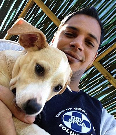 Frivilligt arbejde med dyr I udlandet