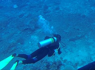Amalie Marstrand, 20 år, Fiji