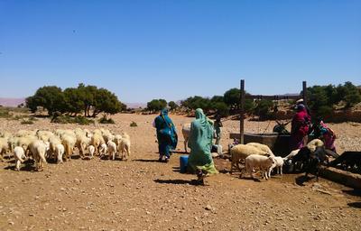 Nomadeprojekt i Marokko