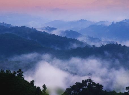 Bjergrig udsigt i Bangladesh
