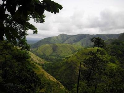 Det smukke, grønne højland i Ghana