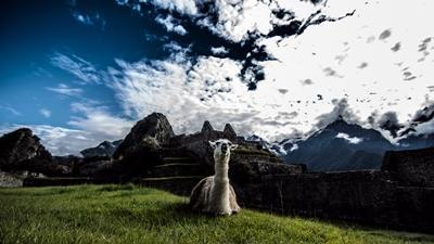 Oplev et af verdens vidundere, Machu Picchu i Peru