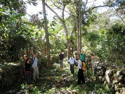 Frivillige arbejder på en inka-sti i Peru