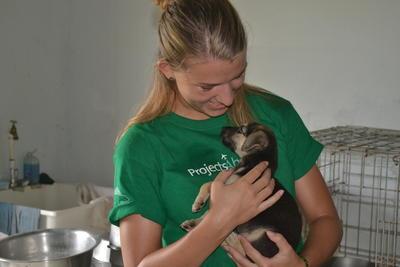 Frivilligt arbejde med dyrepasning i Belize.