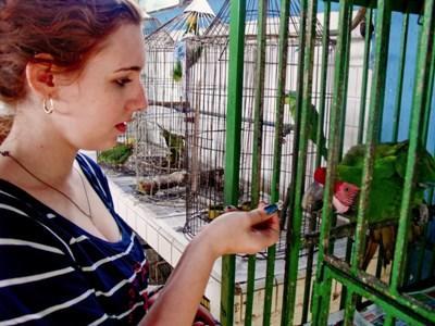 Frivillig på dyrepasningsprojekt i Mexico