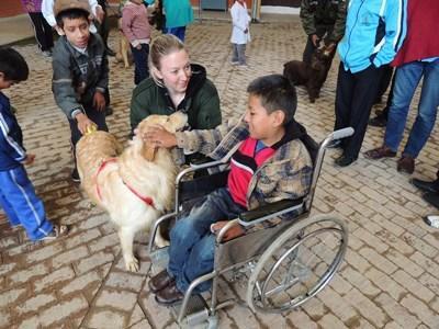 Frivillig på hundeterapi-projektet i Bolivia
