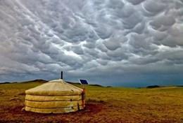 Volunteer Mongoliet