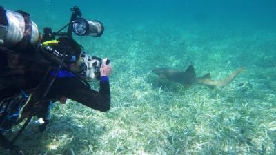 Frivillig filmer under vand
