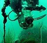 Dive Against Debris Survey 2013 - 2014