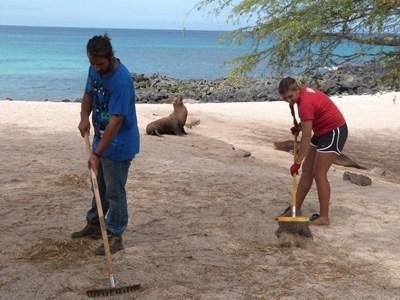 Strandrengøring på Galapagos