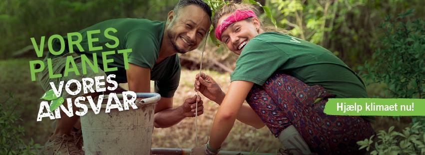 Frivillige arbejder med naturbevaring i regnskoven
