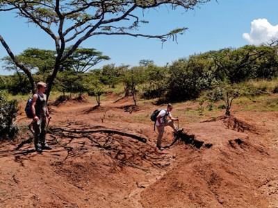 Frivillige på Miljø & Natur-projektet i Kenya