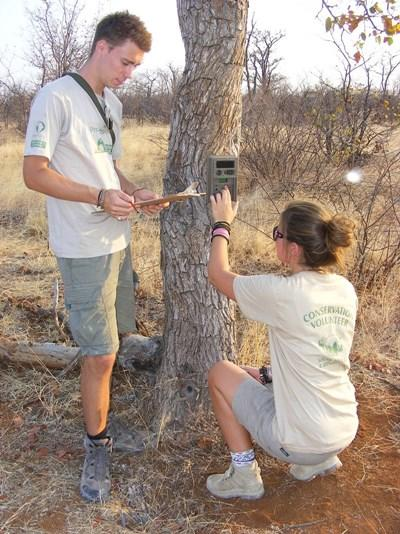 Frivillige på Natur & Miljø-projekt i Botswana og Sydafrika