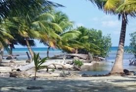 Frivilligt arbejde i Belize