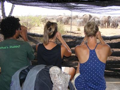 naturprojekt i Sydafrika